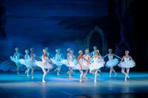 artist ballerina ballet ballet dancer